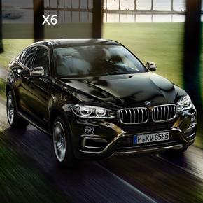 X6 xDrive 30d_OE
