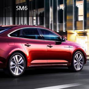 SM6 2.0 Gde PE (가솔린)